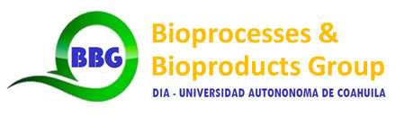 Bioprocesses & Bioproducts Group - logo
